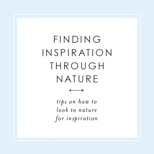 Finding Inspiration Through Nature