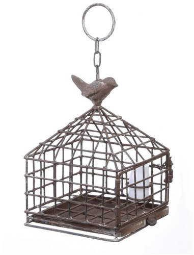 metal birdcage and feeder