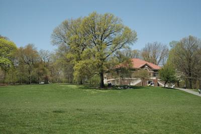 Prospect Park - Brooklyn