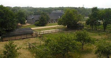 Queens County Farm Museum - Floral Park