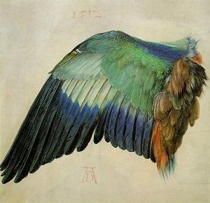 Artists Who Inspire - Albrecht Dürer