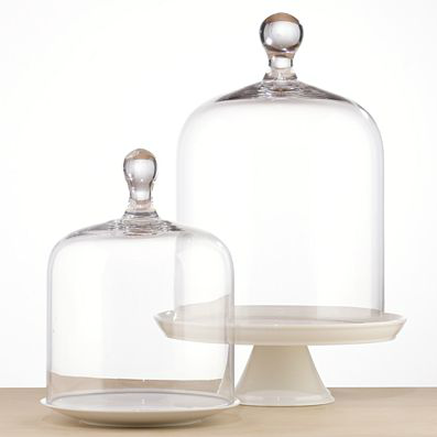 Shop of the Month: World Market - Glass Cloche