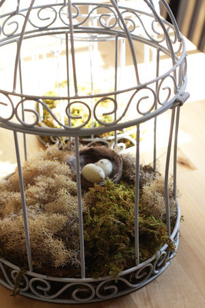 Make Your Space Birdcage Beautiful