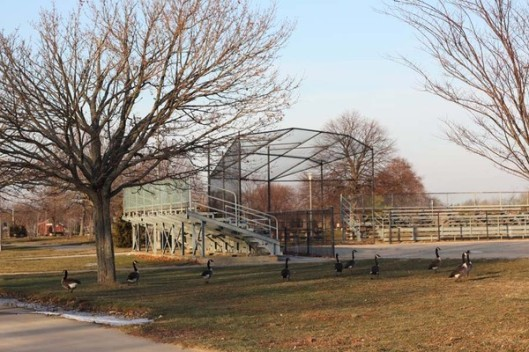 Historic Series: Wantagh Park - Copyright 2012 Melissa O'Connor