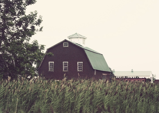 Inspiration Photo Friday: Barn in the Fields - Copyright 2012 Melissa O'Connor-Arena