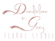 Dandelion and Gray