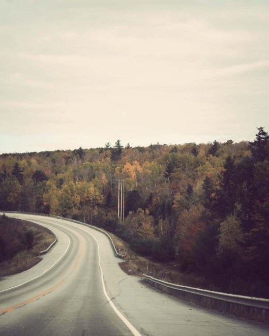 Inspiration Photo Friday: The Road Home - © Melissa O'Connor-Arena