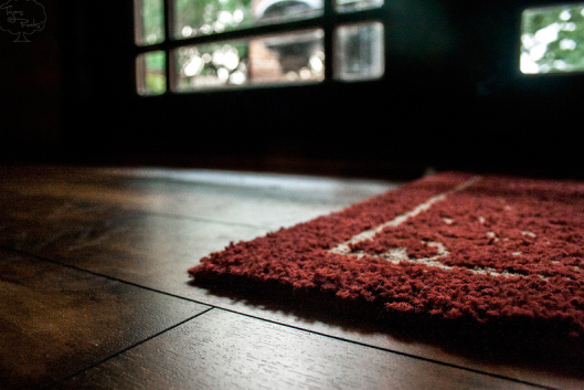 Designing with Dark Wood Flooring