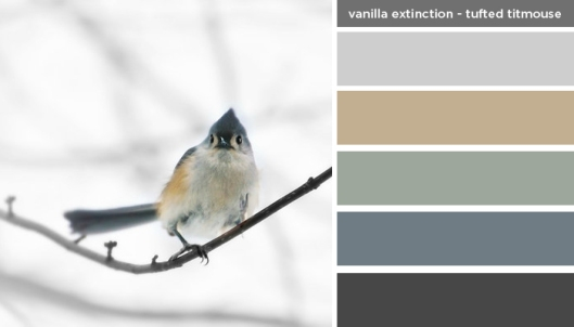 Art Inspired Palette: Vanilla Extinction-Tufted Titmouse Bird