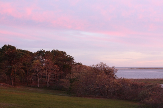 Vacay in Martha's Vineyard - Copyright Melissa O'Connor-Arena