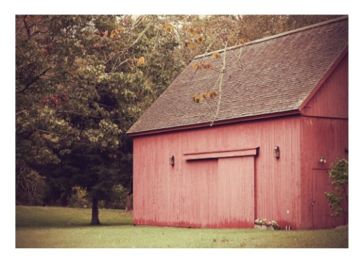 Red Barn in Autumn - Photo by Melissa O'Connor-Arena