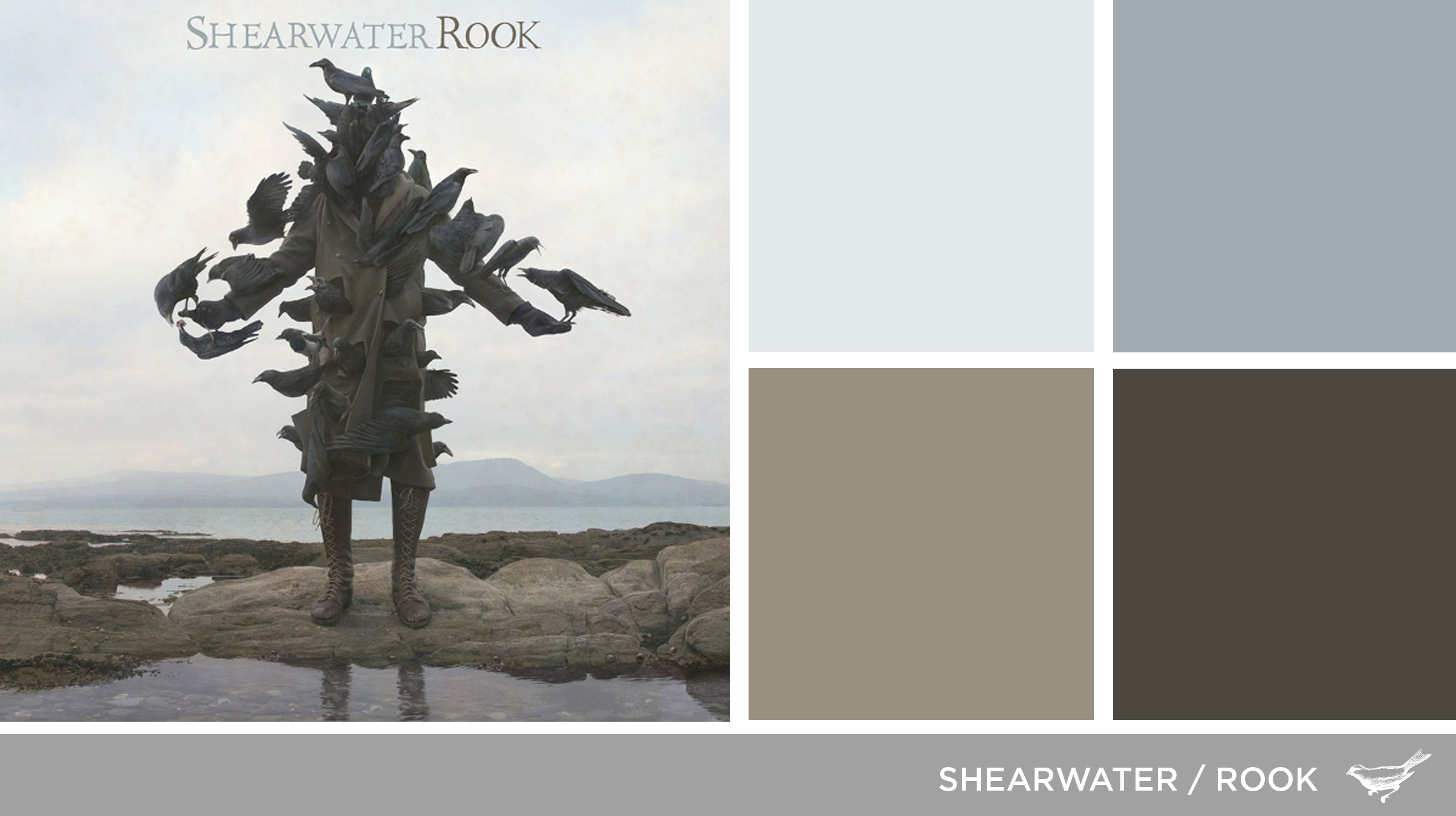 Sound in Color: Shearwater-Rook